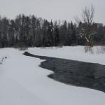 Soumarák v zimě